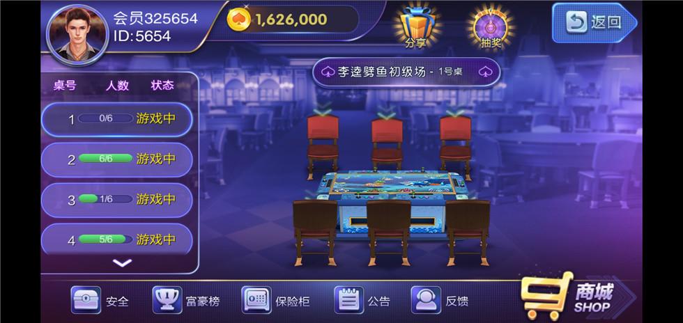 大富豪二开隆鑫棋牌电玩-第5张