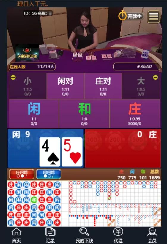 微信大赢家真人H5百家乐/支付已接/带教程插图(1)